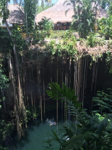 This was the cenote (or underground pool) we swam in called Ik-Kil outside Chichen Itza.